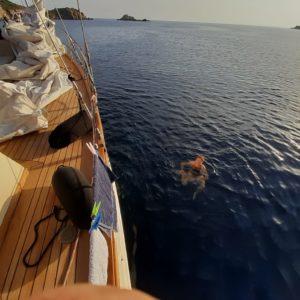 crociera in barca a vela in sardegna